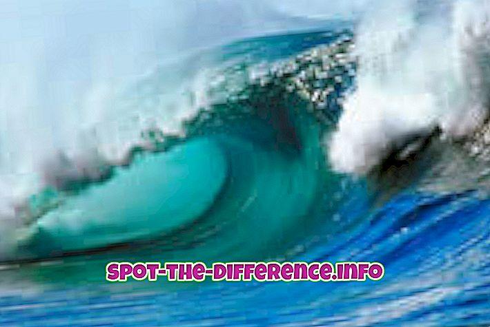 forskjell mellom: Forskjellen mellom tidevannsbølge og tsunami
