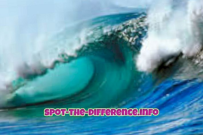 Starpība starp plūdmaiņu viļņu un cunami