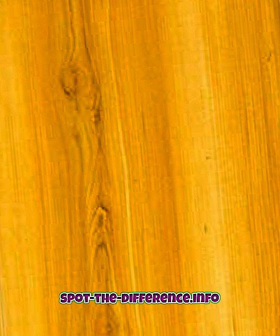 ความแตกต่างระหว่าง: ความแตกต่างระหว่างไม้สนกับไม้อัด