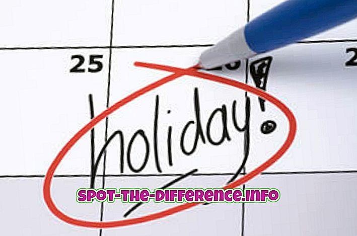 Diferența dintre vacanță și vacanță
