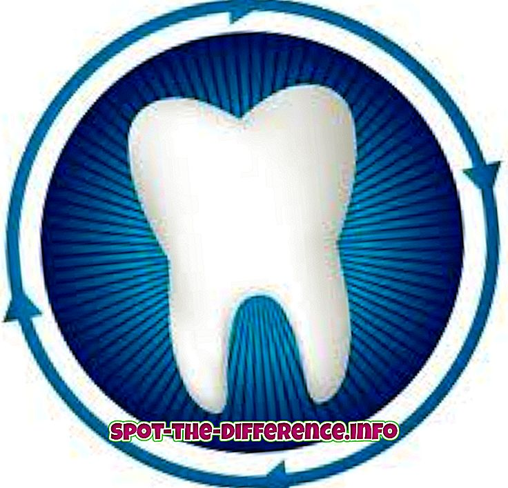 Unterschied zwischen: Unterschied zwischen Zahn und Zähnen