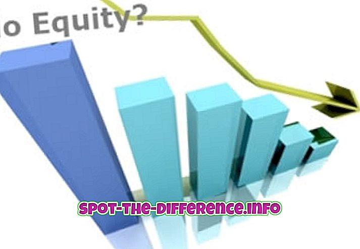 a különbség köztük: A részvény és a részvény közötti különbség