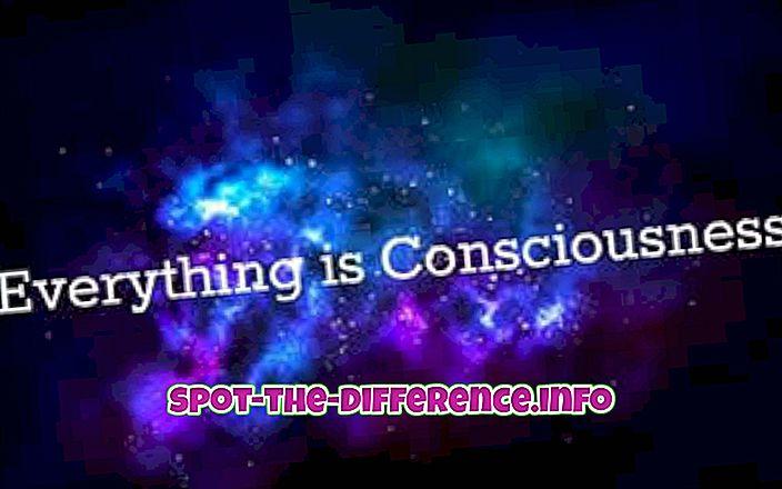 Différence entre conscience et conscience