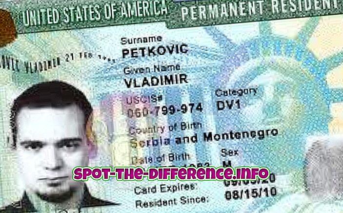 Разлика између зелене карте, пасоша и виза