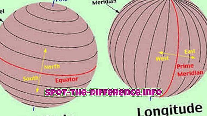 Unterschied zwischen Längen- und Breitenlinien