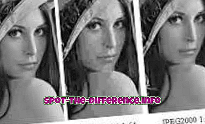 perbedaan antara: Perbedaan antara JPEG dan JPEG2000