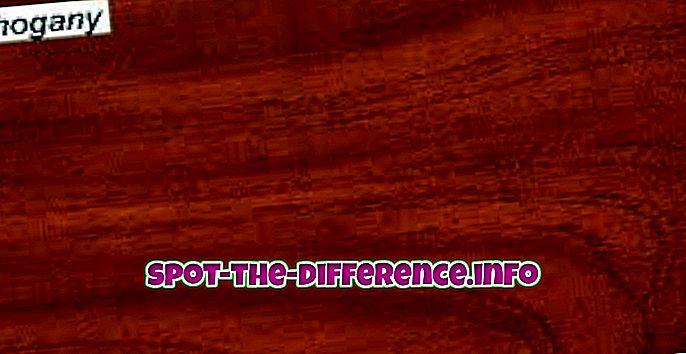 perbedaan antara