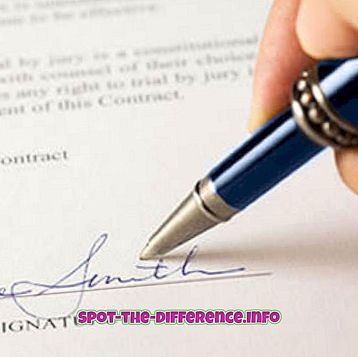 diferença entre: Diferença entre LC e SBLC