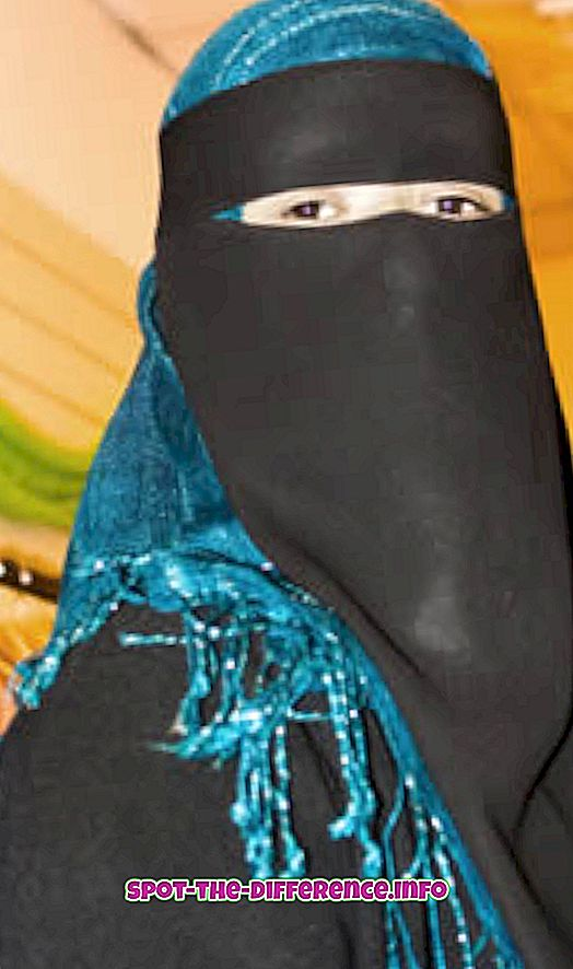 ero: Niqabin ja Hijabin välinen ero