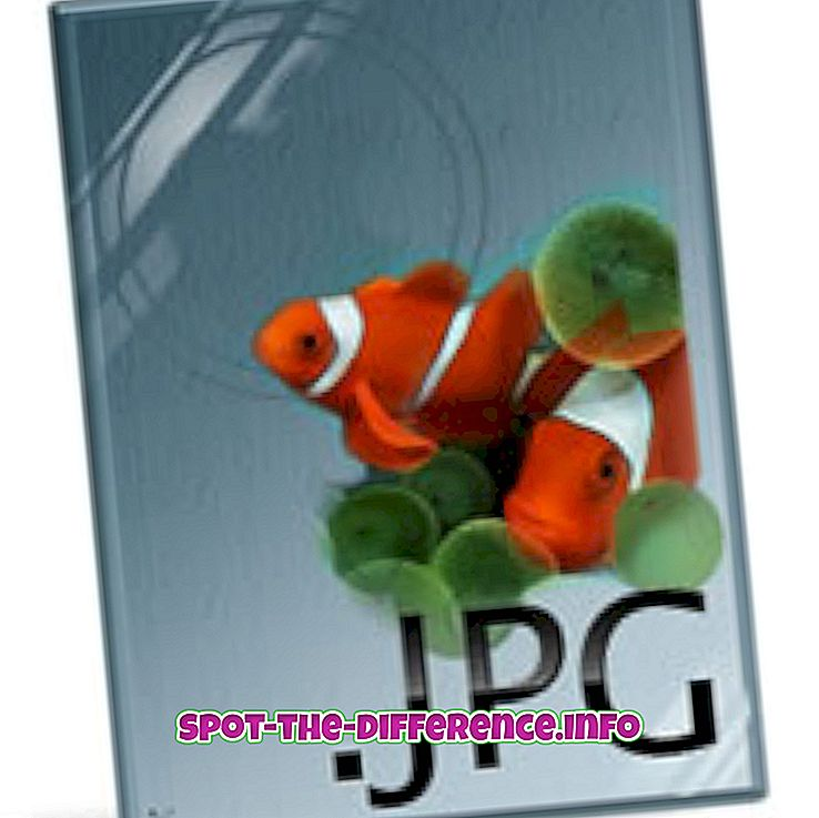Forskjellen mellom JPG og GIF