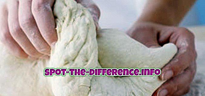 rozdíl mezi: Rozdíl mezi těstí a těstí
