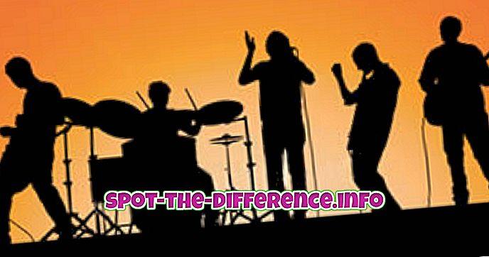 rozdiel medzi: Rozdiel medzi kapelou a orchestrom