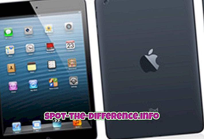 różnica pomiędzy: Różnica między iPad Mini i Asus FonePad
