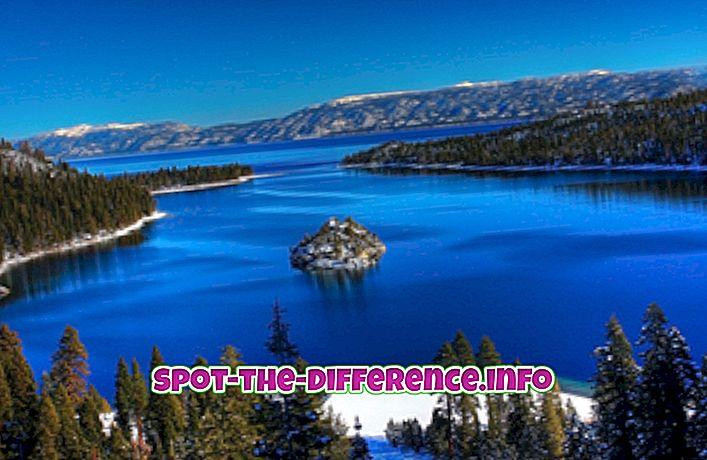 Разлика између језера и језера