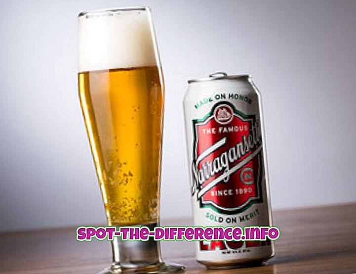 Rozdiel medzi Lager a plzeňským pivom