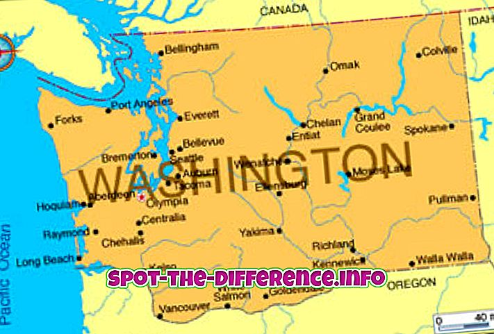 Differenza tra Washington e Washington DC