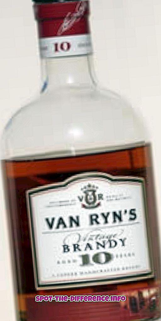 Rozdiel medzi Brandy a Cognac
