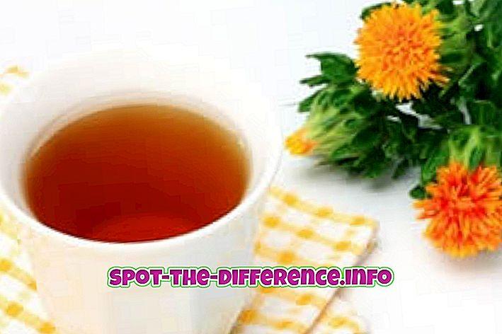 Rozdiel medzi saflorovým olejom a olivovým olejom