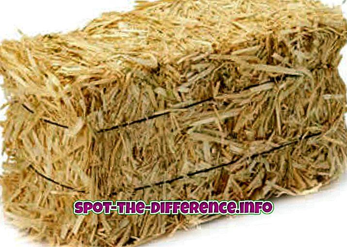 Perbedaan antara Straw dan Hay