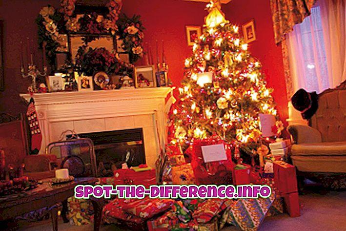 Erinevus jõulude ja tänupüha vahel
