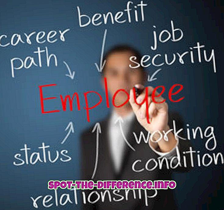 perbedaan antara: Perbedaan antara Kontraktor Independen dan Karyawan