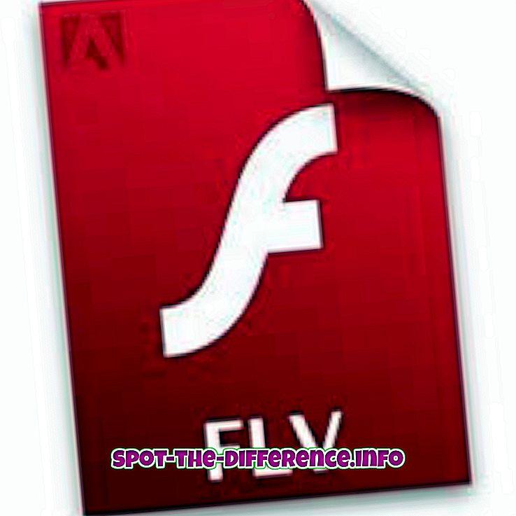 rozdiel medzi: Rozdiel medzi FLV a FLA