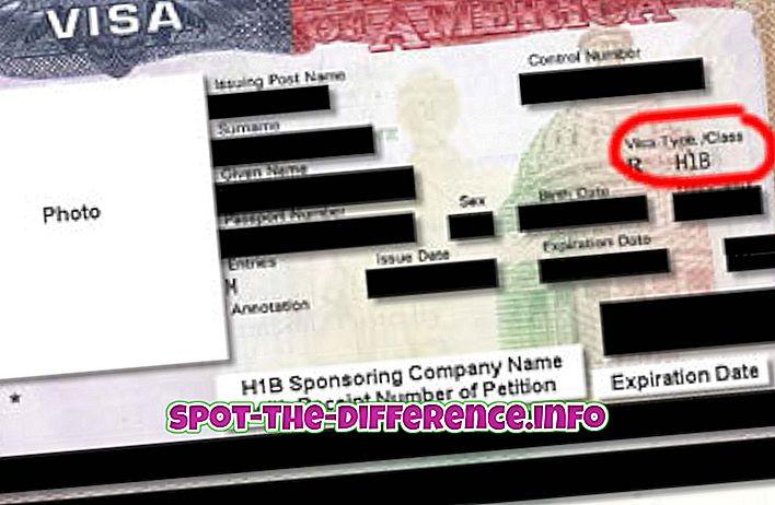 Sự khác biệt giữa Visa H1B và Visa L1