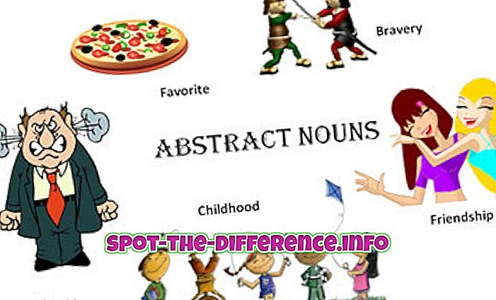 ความแตกต่างระหว่าง: ความแตกต่างระหว่างบทคัดย่อและรูปธรรมในภาษา