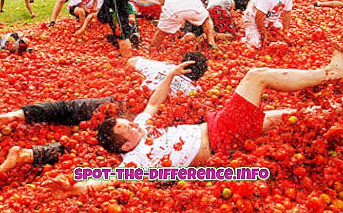 Forskjellen mellom La Tomatina og Holi