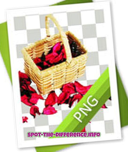 vahe: Erinevus PNG ja JPG vahel