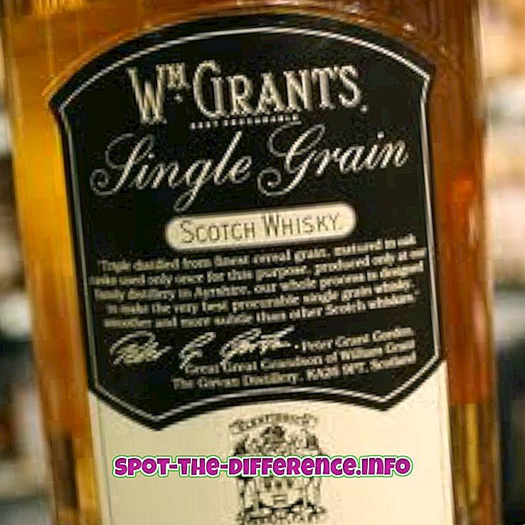 Unterschied zwischen Malt Whisky und Grain Whisky