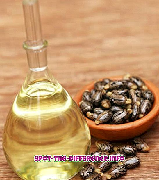 Rozdiel medzi ricínovým olejom a minerálnym olejom