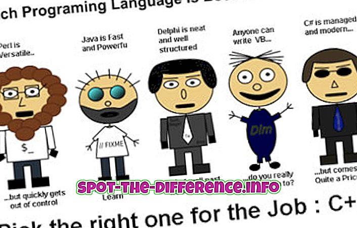 との差: プログラミング言語とスクリプト言語の違い