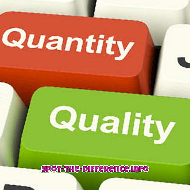 разлика между: Разлика между качество и количество