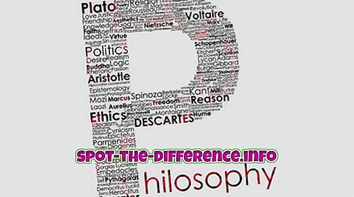 rozdiel medzi: Rozdiel medzi filozofiou a literatúrou