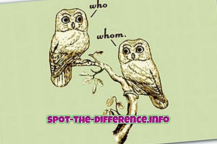 Unterschied zwischen wem und wem