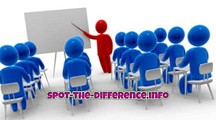 verschil tussen: Verschil tussen training en workshop
