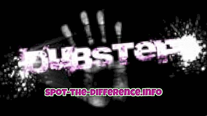 verschil tussen: Het verschil tussen Dubstep en Techno