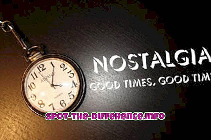 ความแตกต่างระหว่าง: ความแตกต่างระหว่าง Nostalgia และ Melancholy