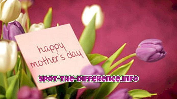 rozdíl mezi: Rozdíl mezi Den matek a mateřskou nedělí