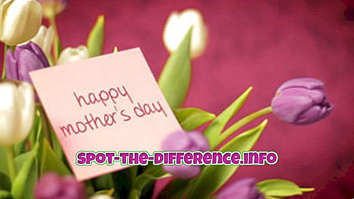Perbedaan antara Hari Ibu dan Hari Ibu