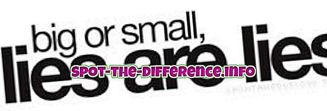 διαφορά μεταξύ: Διαφορά μεταξύ ψεύδους και εξαπάτησης
