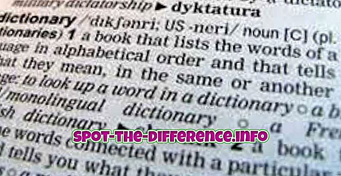 Forskjellen mellom ordbok og tesaurus