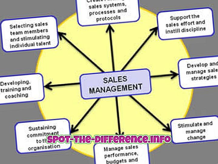 Forskel mellem Sales Management og Marketing Management
