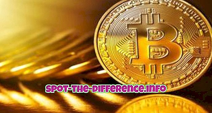 perbedaan antara: Perbedaan Antara Bitcoin dan Blockchain