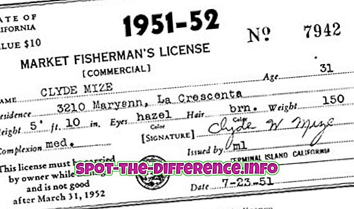 Forskel mellem kommercielle og personlige licenser
