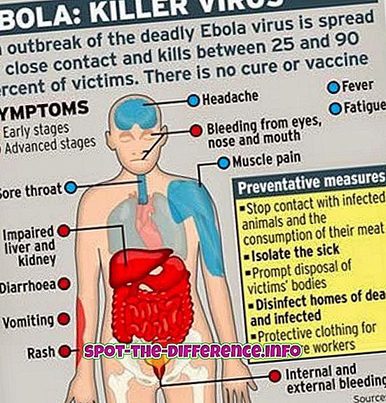 Starpība starp Ebolu un Marburgu