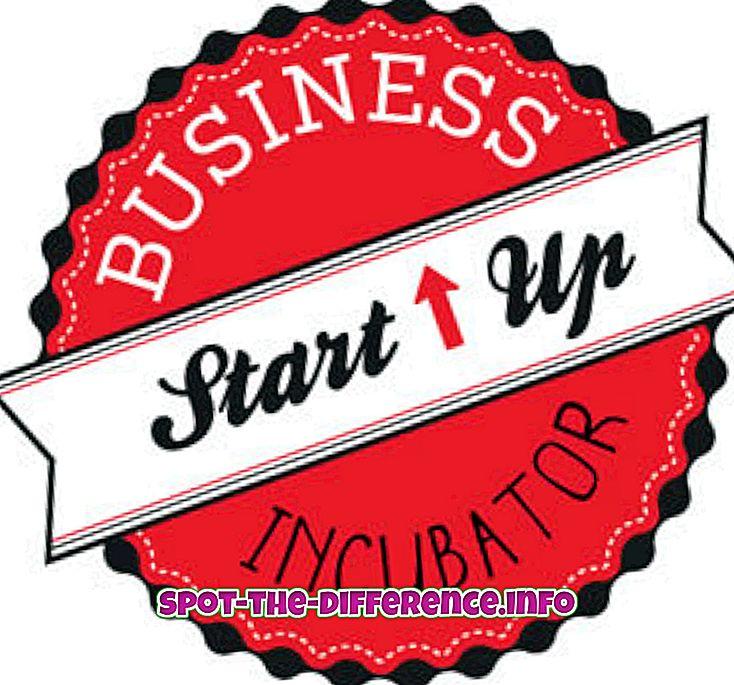atšķirība starp: Starpība starp starta inkubatoru un paātrinātāju