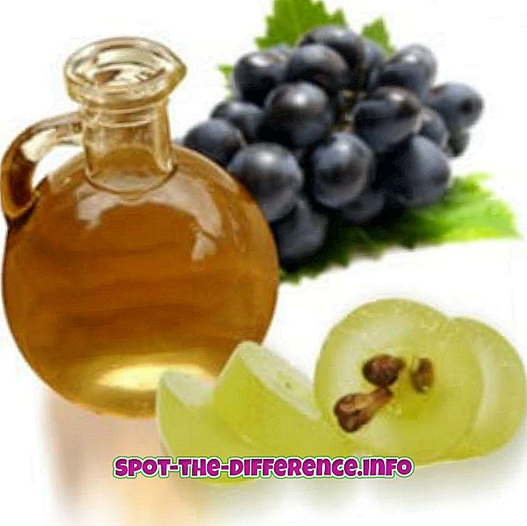 atšķirība starp: Starpība starp rapšu eļļu un vīnogu sēklu eļļu