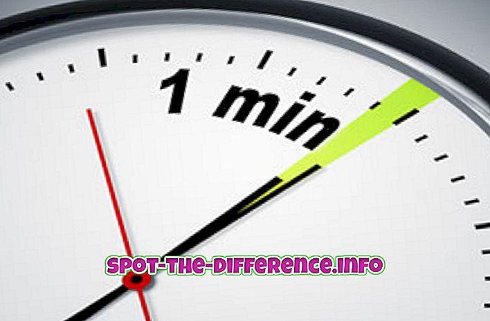 atšķirība starp: Starpība starp Minuet un Minute